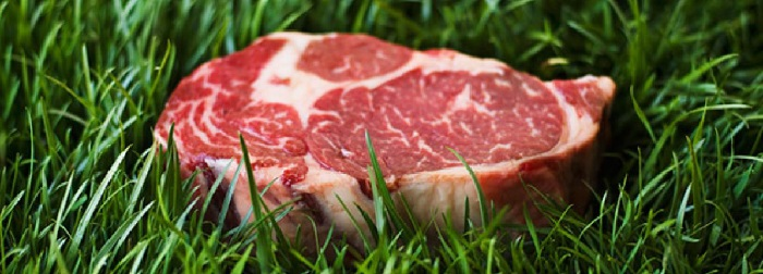 dr mozzi carne rossa